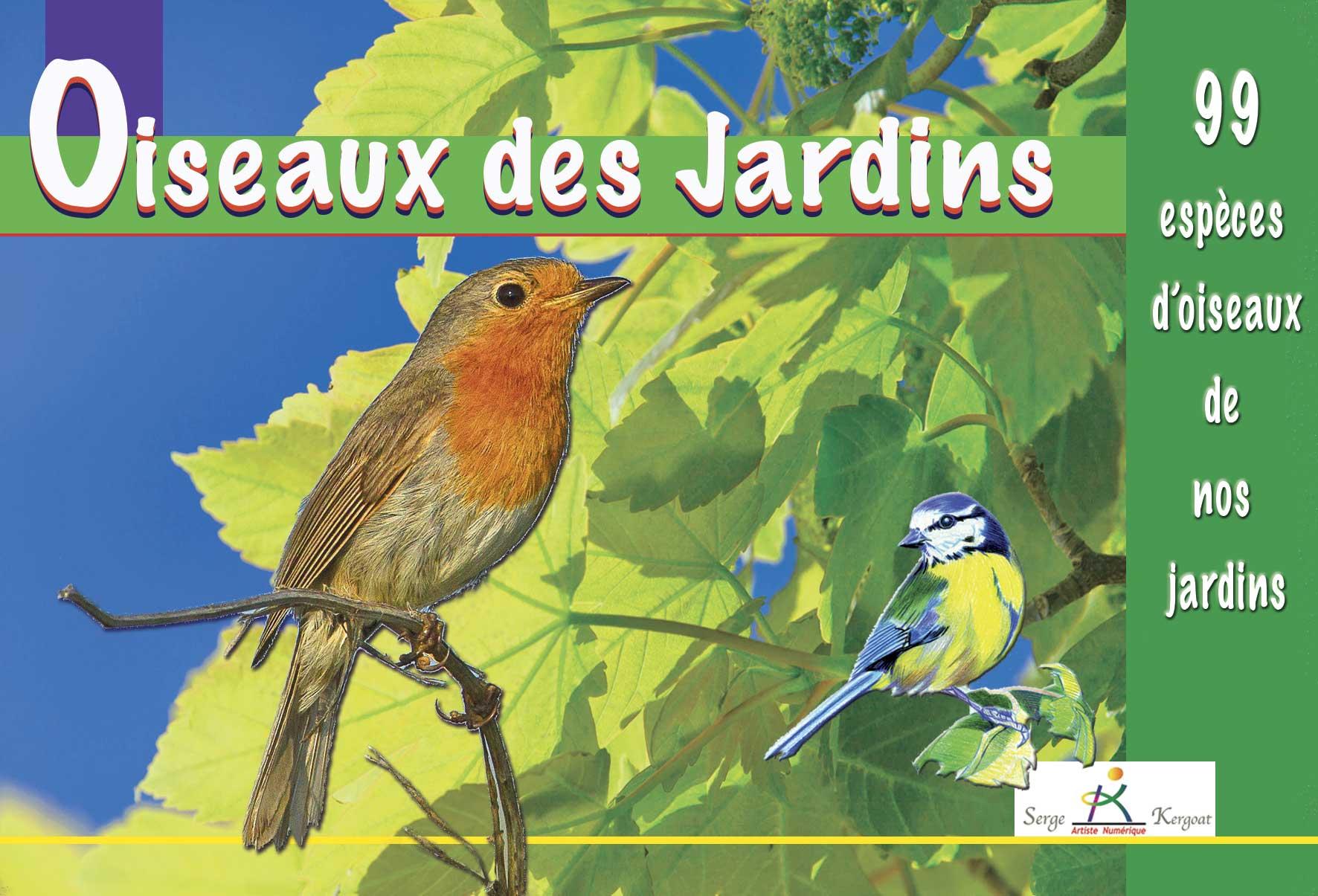 Nature oiseaux des jardins for Oiseaux de jardin au printemps